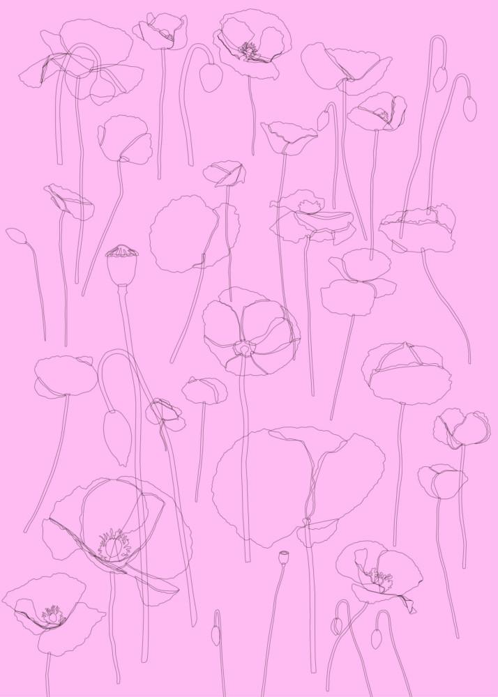 50x70 Unikot piirrokset